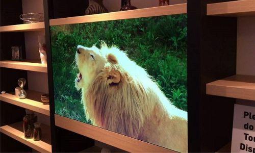 tv transparan tembus pandang telah hadir